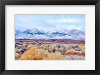 Framed High Desert Vista I