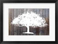 Framed White Tree on Wood