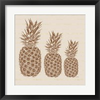 Framed Three Pineapples