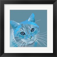 Framed Cat in Blue