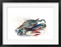 Framed Crab II