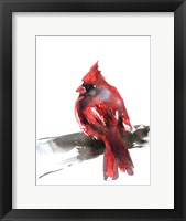 Framed Cardinal on Branch II