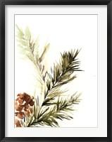 Framed Pine Leaves