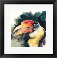 Framed Toucan II