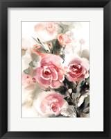 Framed More Roses