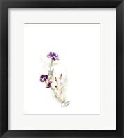 Framed Purple Pansies