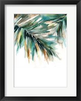 Framed Evergreen II