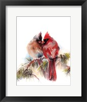 Framed Cardinals V