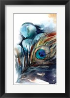 Framed Peacock III