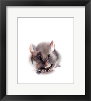 Framed Mouser