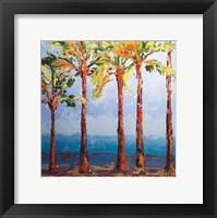 Framed Through the Palms