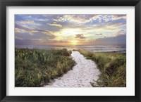 Framed Morning Trail