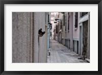 Framed Dantel Street Cat