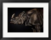 Framed Last Unicorn