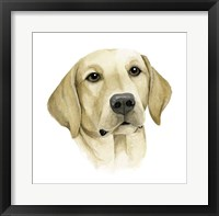 Human's Best Friend I Framed Print