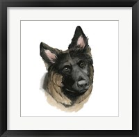 Human's Best Friend II Framed Print