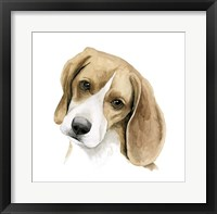 Human's Best Friend III Framed Print