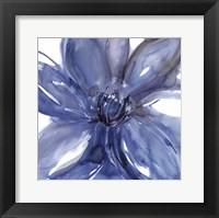 Framed Blue Beauty II