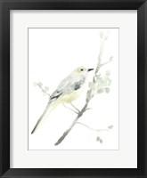 Avian Impressions II Framed Print