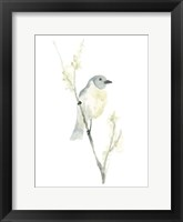 Avian Impressions III Framed Print