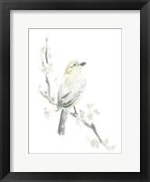 Avian Impressions IV Framed Print