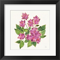 Framed Tropical Fun Flowers IV with Gold