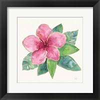 Framed Tropical Fun Flowers III with Gold