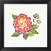 Framed Tropical Fun Flowers II with Gold