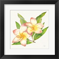 Framed Tropical Fun Flowers I with Gold