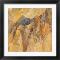 Framed Canyon 3B
