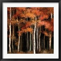 Framed October Woods