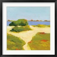 Framed Path to the Beach
