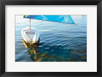 Framed Summer Reflection