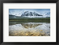 Framed Waterfowl Lake I