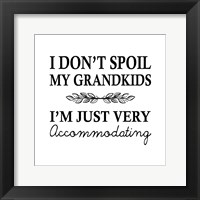 Framed I Don't Spoil My Grandkids Leaf Design White
