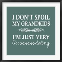 Framed I Don't Spoil My Grandkids Leaf Design Teal
