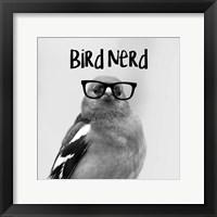 Framed Bird Nerd - Chaffinch
