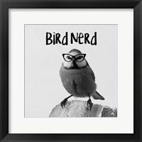 Framed Bird Nerd - Blue Tit