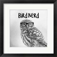 Framed Bird Nerd - Owl