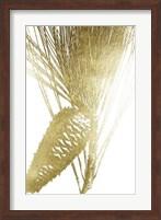 Framed Gold Foil Pine Cones II