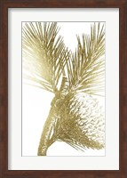 Framed Gold Foil Pine Cones III