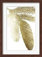 Framed Gold Foil Pine Cones IV