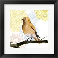 Mandala Bird II Framed Print
