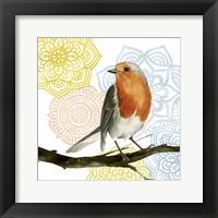 Mandala Bird IV Framed Print