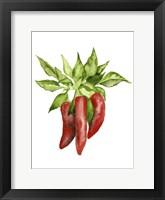 Watercolor Veggie II Framed Print