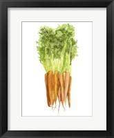 Watercolor Veggie III Framed Print
