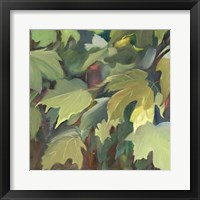 Framed Leaf Array I
