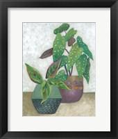 House Garden II Framed Print