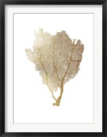 Framed Gold Foil Sea Fan I