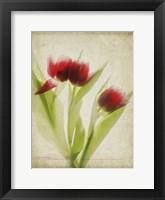 Framed Parchment Flowers I